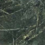 Jungle V/P 44x44