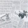 Newspaper P 44x44